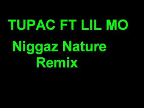 Tupac-Niggaz Nature Remix ft lil Mo