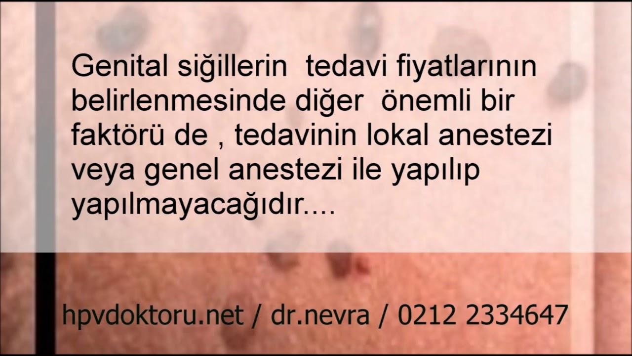 Papilloma papillary carcinoma bladder - rogather.ro - Hpv lazer tedavisi fiyatlar