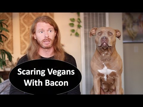 Scaring Vegans with Bacon - Ultra Spiritual Life episode 84
