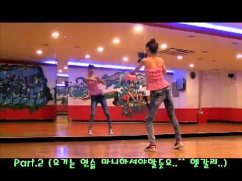 T-ara - Roly Poly Dance Tutorial Part 1