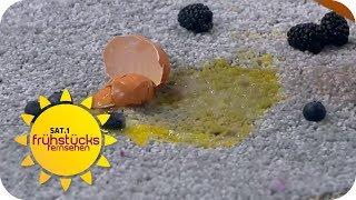 So geht JEDER FLECK weg! | SAT.1 Frühstücksfernsehen | TV