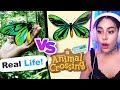 Animal Crossing VS Real Life