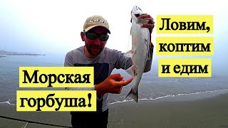 Морская горбуша! Ловим, коптим и едим