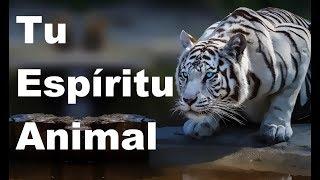 Tu Espíritu Animal, Según tu Signo del Zodiaco