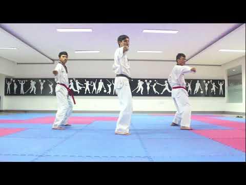 Tutorial Poomsae Basic 3 || Taekwondo Indonesia Universitas Brawijaya