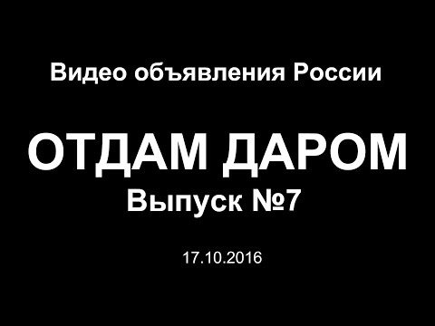 Отдам даром. Выпуск №7 (17.10.2016) - Видео объявления России
