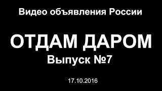 Отдам даром. Выпуск №7 (17.10.2016) - Видео объявления России<