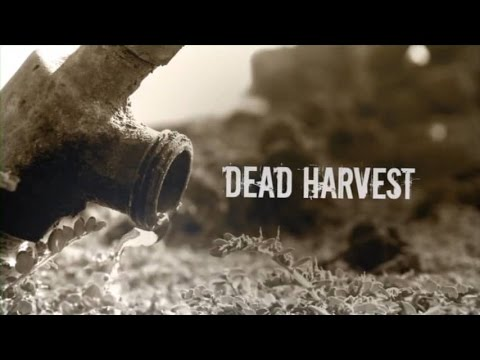 Dead Harvest -- Central Valley of California Water Crisis
