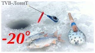 Ловля плотви взимку на мормишку в малій річці! Зимова риболовля.
