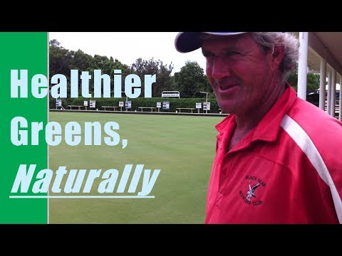 How To Overcome Nematodes for Healthier, Even Bowling Greens