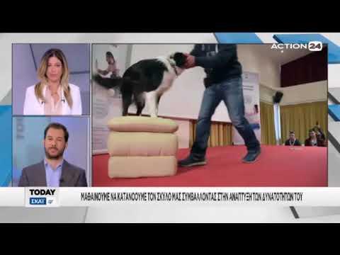 O Κτηνίατρος Δρ. Χρήστος Καραγιάννης στη Μάιρα Μπάρμπα για την Ημερίδα Συμπεριφοράς Σκύλου