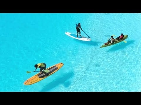 Tropical Paradise In Florida   Man Made Lagoon