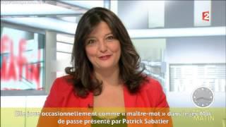 Carinne Teyssandier - Carrière professionnelle