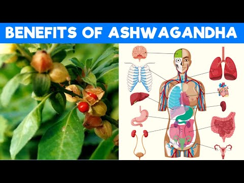 8 Amazing Health Benefits of Ashwagandha