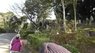 杉家の墓の案内.