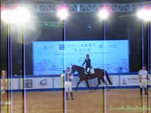 2014 Shanghai Tourism Festival: Equestrian Performance, Shanghai Oriental Pearl TV Tower, 27/09.