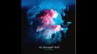 The Pineapple Thief - Someone Pull Me Out + Lyrics