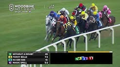 Woodbine: October 26, 2019 - Race 7