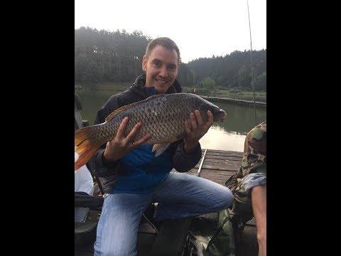 рыбалка видео карп