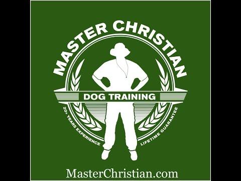 Rottweiler Working. Master Christian Dog Training Atlanta