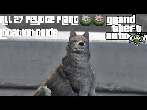 GTA 5 - All 27 Peyote Plant Location Guide (Animal Easter Egg)