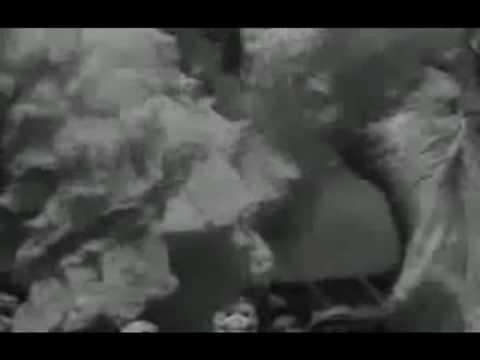 Smashing Pumpkins: Galapogos