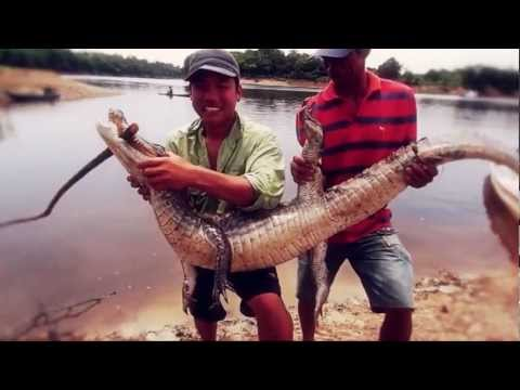 The Amazon Fishing Episode ตะลุยป่าอะเมซอน