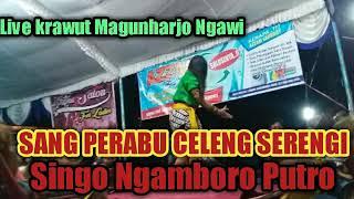 SNP Singo Ngamboro Putro Live Krawut Mangunharjo ngawi