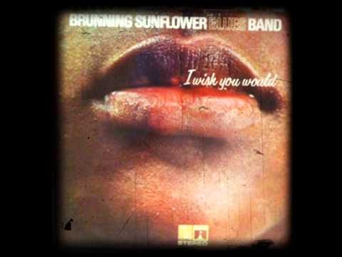 BRUNNING  SUNFLOWER BLUES BAND - CHECKING ON MY BABY