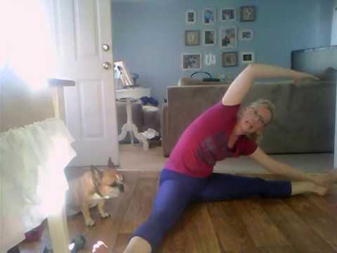 Welllness with Amanda Workout #4