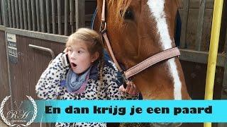 Tessa krijgt Verona, een KWPN paard  * Hart voor Paarden *