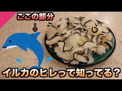 幻の食材!!イルカのヒレってどんな味か知ってる?