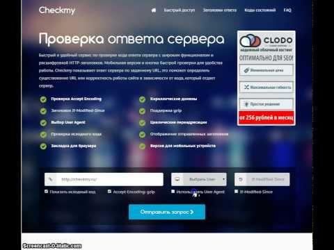Сервис CheckMy - проверка ответа сервера