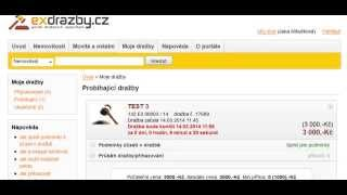 Instrukce exdrazby.cz - Jak dražit