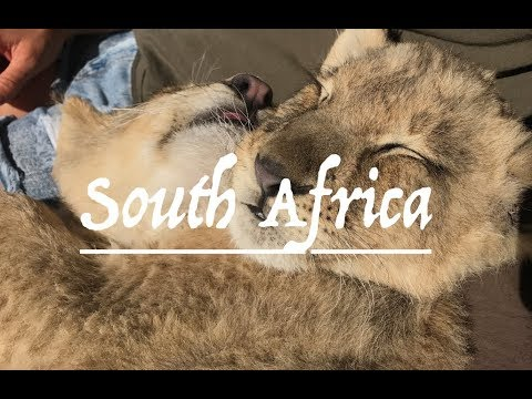 South Africa | Travel Montage