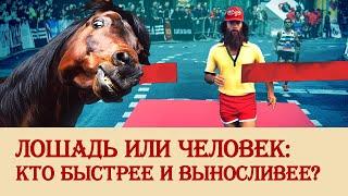 Лошадь или человек: кто быстрее и выносливее?