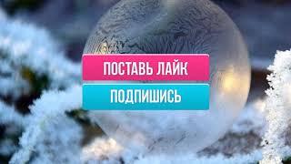 Гороскоп на декабрь 2020 года для Лев