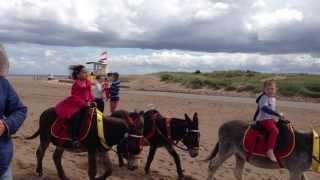 Skegness,Donkey ride,