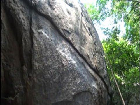 Kaludiya Pokuna forest in danger?