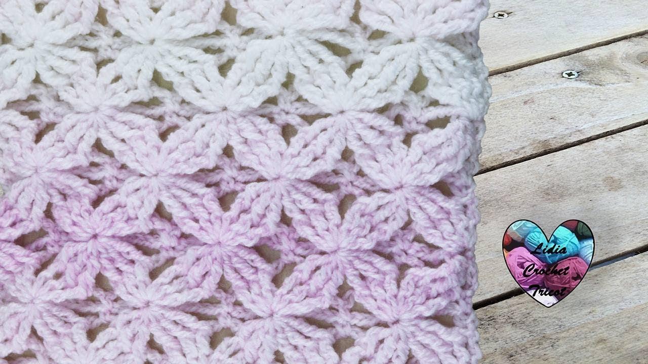 Point Crochet Fleurs En Relief Splendide