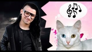 [Реакция кота на дабстеп]  Cat reaction to dubstep