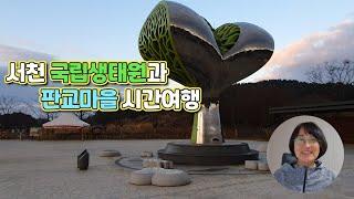 서천 국립생태원과 판교마을 시간여행(충남 서천 가볼만한…