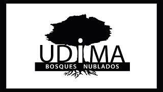 UDIMA - Bosques nublados