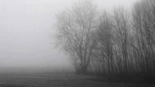 ColdWorld - This Empty Life