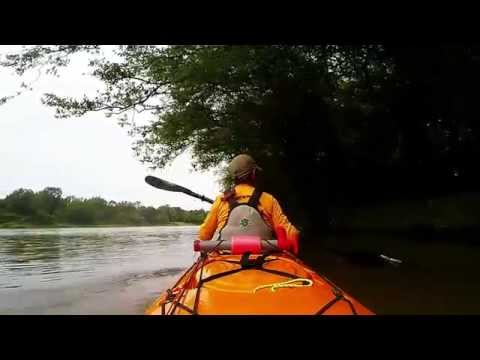 Kayaking along the Ouachita river