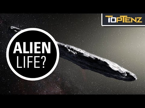 10 Things We Know or Don't about 'Oumuamua
