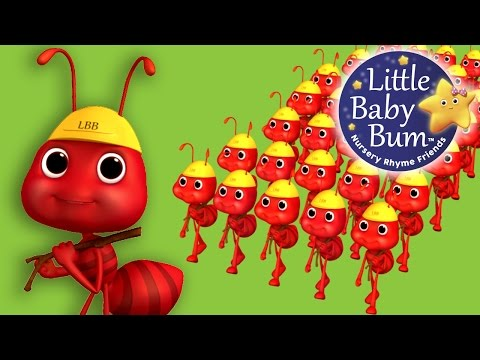 Thumbnail: Ants Go Marching | Nursery Rhymes | By LittleBabyBum!