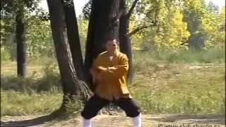 Комплекс Цигун 'Восемь кусков парчи' Обуч видео