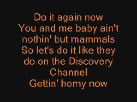 Bad Touch Lyrics