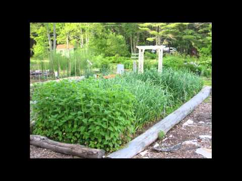 Garden and Fiber Tour at Searsport Shores Campground- June 24th 2011
